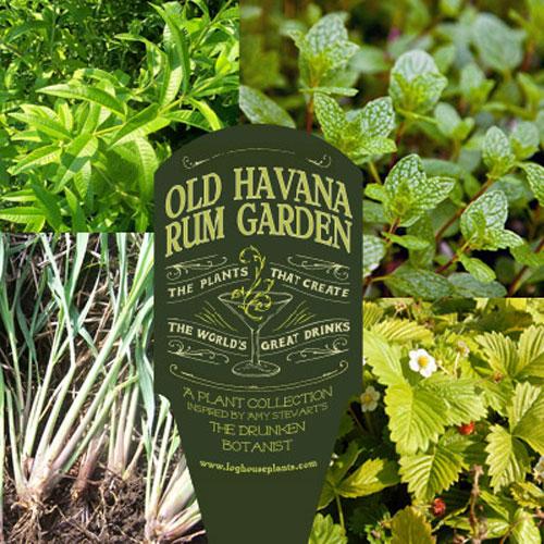 drunken-botanist-plants