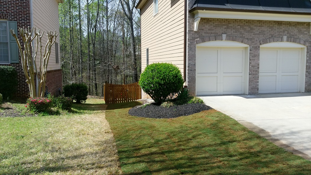 Front Yard Landscaping Georgia : How to make your front yard look bigger greenshooz
