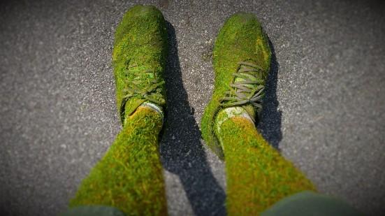 The Real Greenshooz
